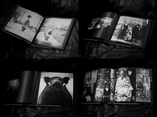 Лянкевіч Андрэй. Паганства / Liankevich Andrei. Pagan. Старонкі з кнігі / Pages from the book