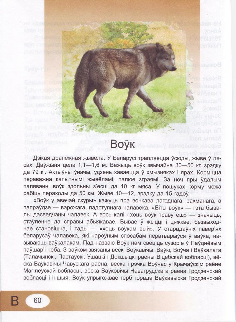 Вершаваная энцыклапедыя жывёльнага свету. Старонкі з кнігі